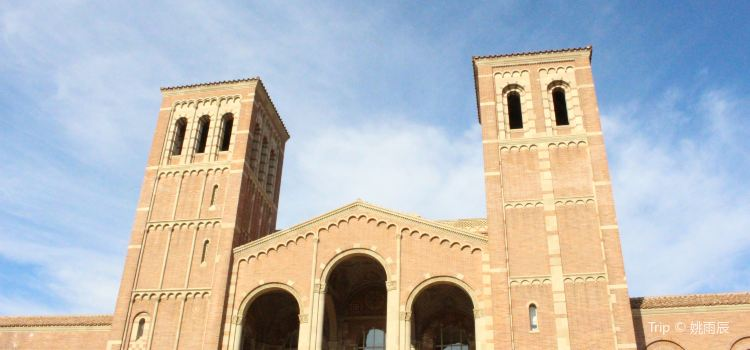 University of California, Los Angeles3