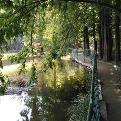 天池山風景區用戶圖片