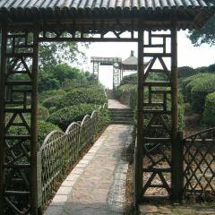 쉐랑산(설랑산) 생태원 여행 사진