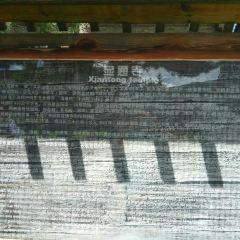 顯通寺用戶圖片