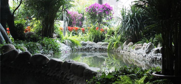 阿爾卡迪亞溫泉2