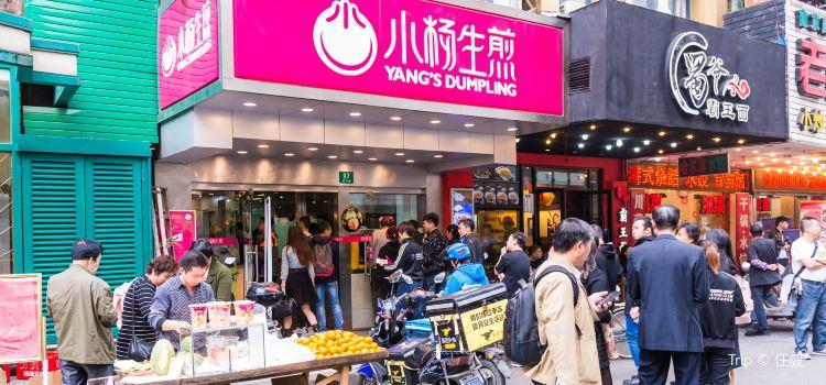 Yang's Fried Dumplings ( Huang He Road)1
