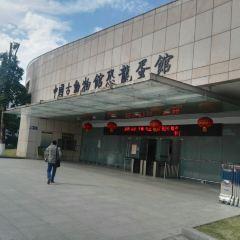 Heyuan City Museum (Heyuan Dinosaur Museum) User Photo