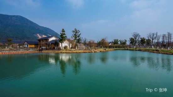 Dayangshan Botanical Garden Scenic Area