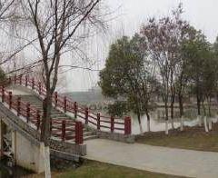 宜春濕地公園用戶圖片