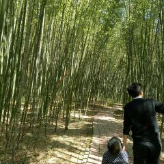 Zhaigou User Photo