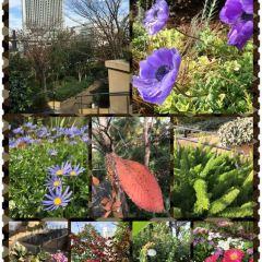 Namba Parks User Photo
