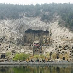 龍門石窟用戶圖片