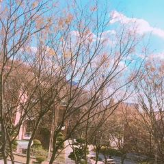 계명대학교(啓明大學校) 여행 사진