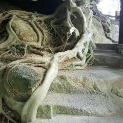 칭위안산 여행 사진