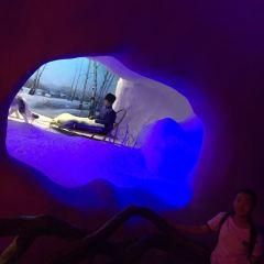 웨이하이 선여우 해양세계 여행 사진