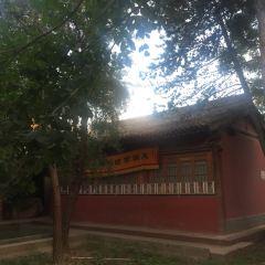西來寺用戶圖片