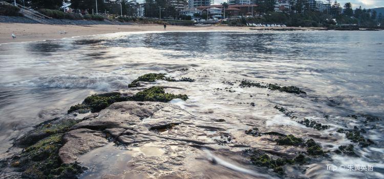 Wollongong2