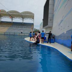 Blue Ocean Park User Photo