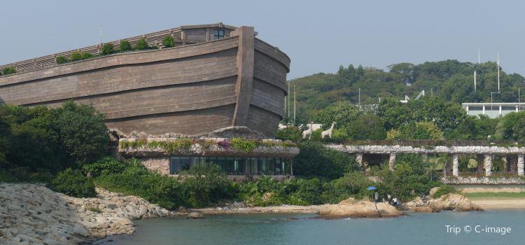 Noah's Ark | Tickets, Deals, Reviews, Family Holidays - Trip com
