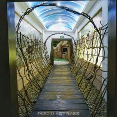 林芝自然博物館用戶圖片