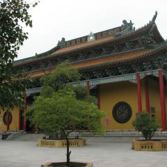 Yangmei Guanyin Buddhist Temple User Photo