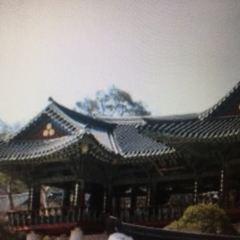 봉은사 여행 사진