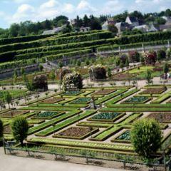 維朗德里城堡及花園用戶圖片