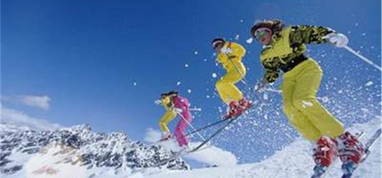 龍鳳山滑雪滑草場1