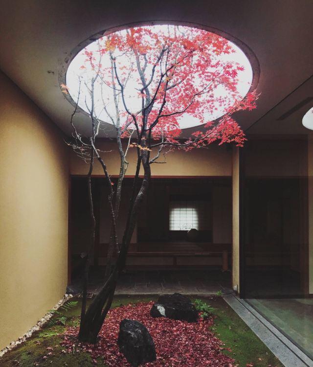 Kahitsukan, Kyoto Museum of Contemporary Art