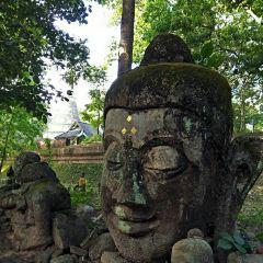 Wat Umong Suan Puthatham User Photo