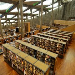 알렉산드리아 도서관 여행 사진