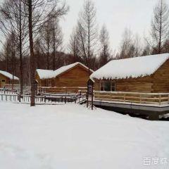 Taoshanyu Hot Spring User Photo