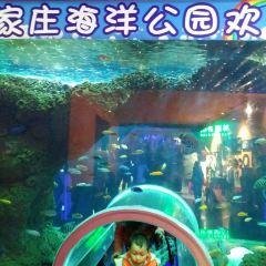 톈산 씨 월드 여행 사진