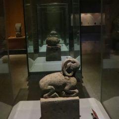 鞏義博物館用戶圖片