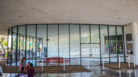 Modern Art Museum of Sao Paulo