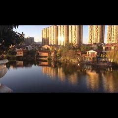 鄉鴨湖歡樂王國用戶圖片