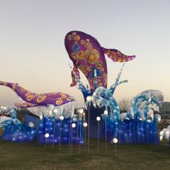 Nanwanhua Town Lantern Festival User Photo