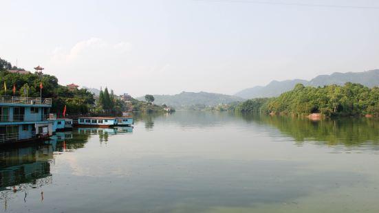 蓮花湖水中園