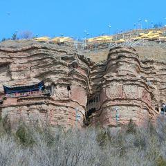 Nature's Buddha User Photo