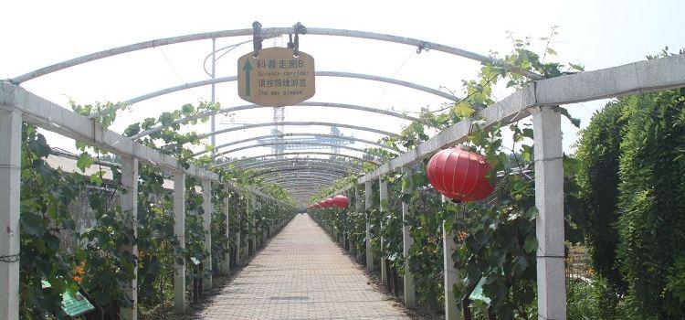 Ulugu Tropical Botanical Garden3