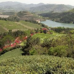 The Chengshangou Scenic Area User Photo