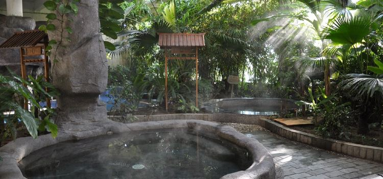 Datang Hot Spring Health Preservation Hall2