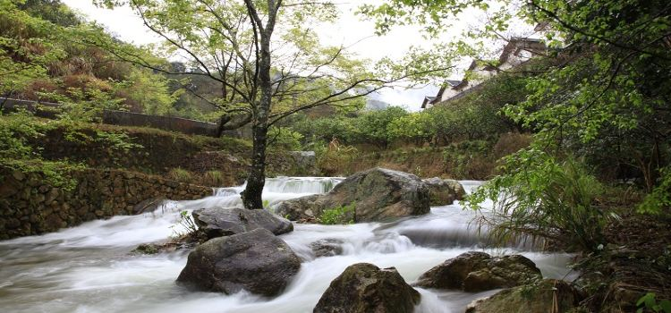 Yannan Feiqiao Stream Scenic Area2