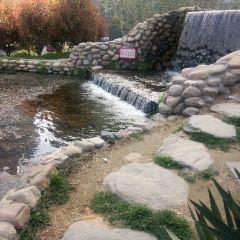 鄭東新區濕地公園用戶圖片