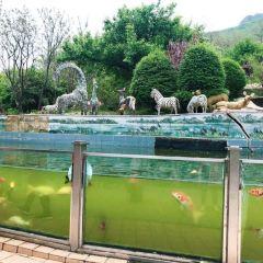 本溪動物園用戶圖片