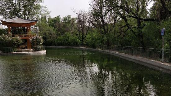 內蒙古林科院樹木園