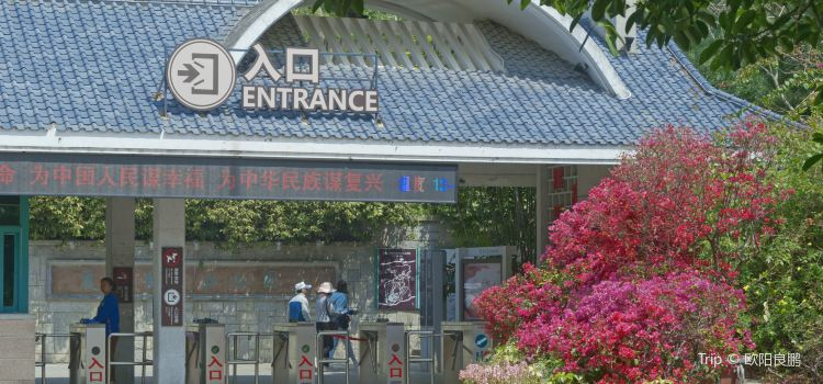 Xiamen Botanical Garden2