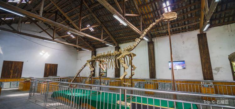恐龍化石館2