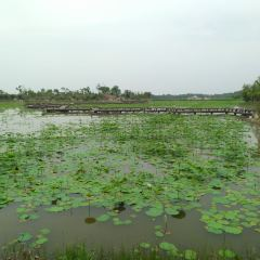Ma Da Lake National Wetland Park User Photo