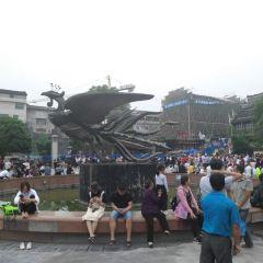 鳳凰廣場用戶圖片