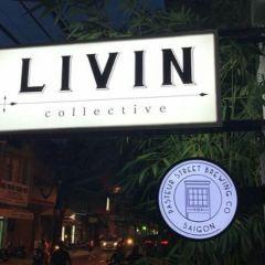 LIVINcollective用戶圖片