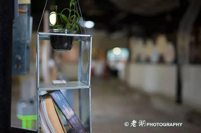 香港九龍那個文藝的牛棚