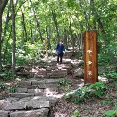 Three Stone National Forest Park User Photo