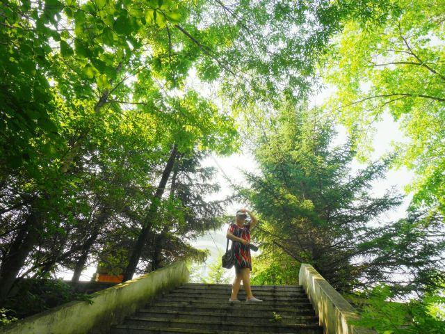 興安森林公園
